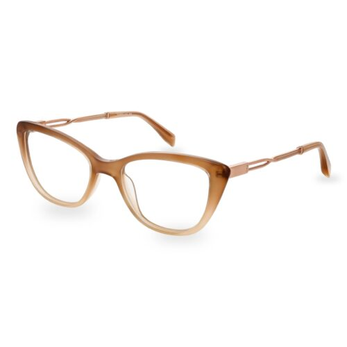 Acetate optical frame in gradient nude color, with assorted color temple tips and special chain design metallic temples